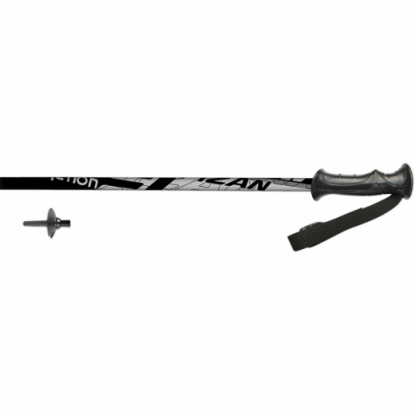 Fizan Action junior skiing poles