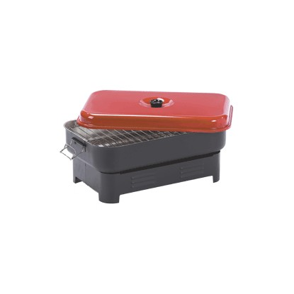 DANCOOK 8900 fish smoker