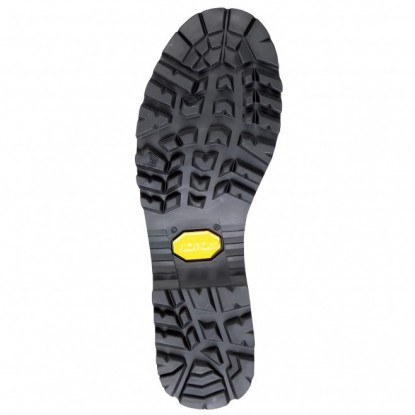 Millet BOUTHAN GTX shoes