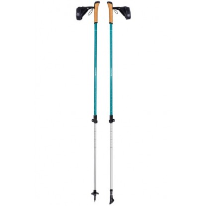 Nordic walking poles Ferrino Step-In