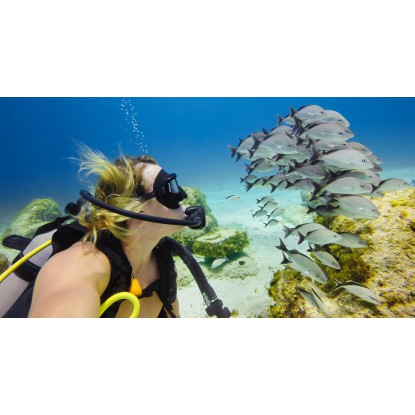 Blue Water Dive Filter (For...