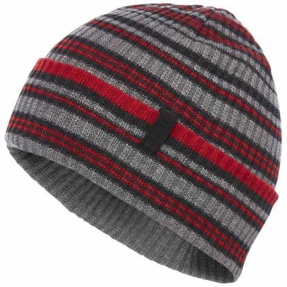 Kepurė Cardiff beanie